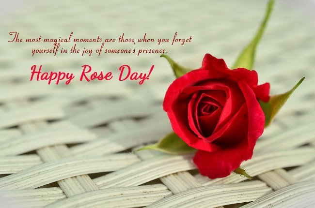 Happy Rose day the most magical moments are those image with lovely wishes for you my love