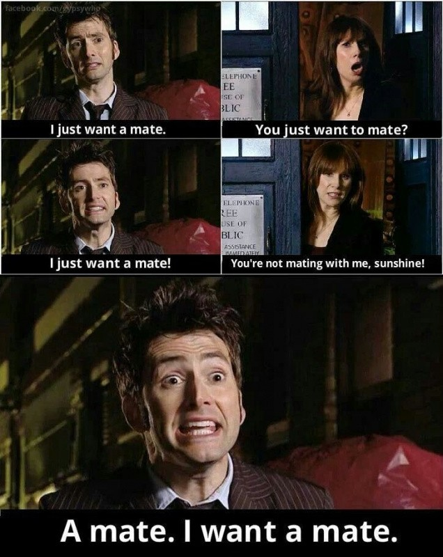 I Just Want A Mate Doctor Who TV Show Quotes
