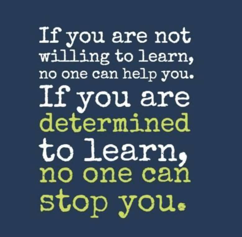 If You Are Not Willing To Learn Education Quotes