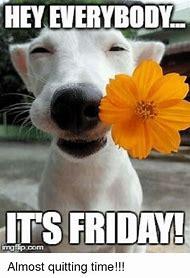 Friday Meme Hey Everybody Its Friday