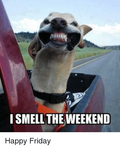 I Smell The Weekend Friday Meme
