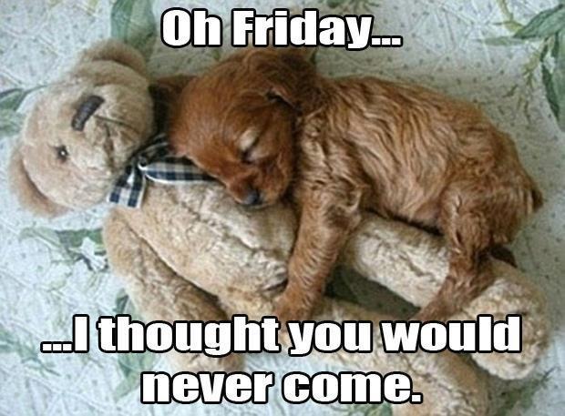 Oh Friday I Thought You Friday Meme