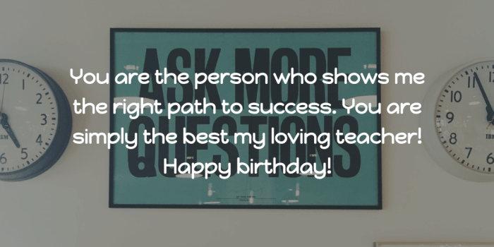 You are the person who shows me Happy Birthday Teacher messages wish