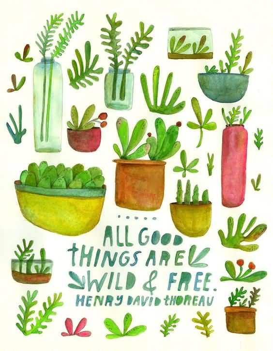 All Good Things Are Wild Plant Quotes