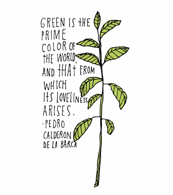 Green Is The Prime Color Of Plant Quotes