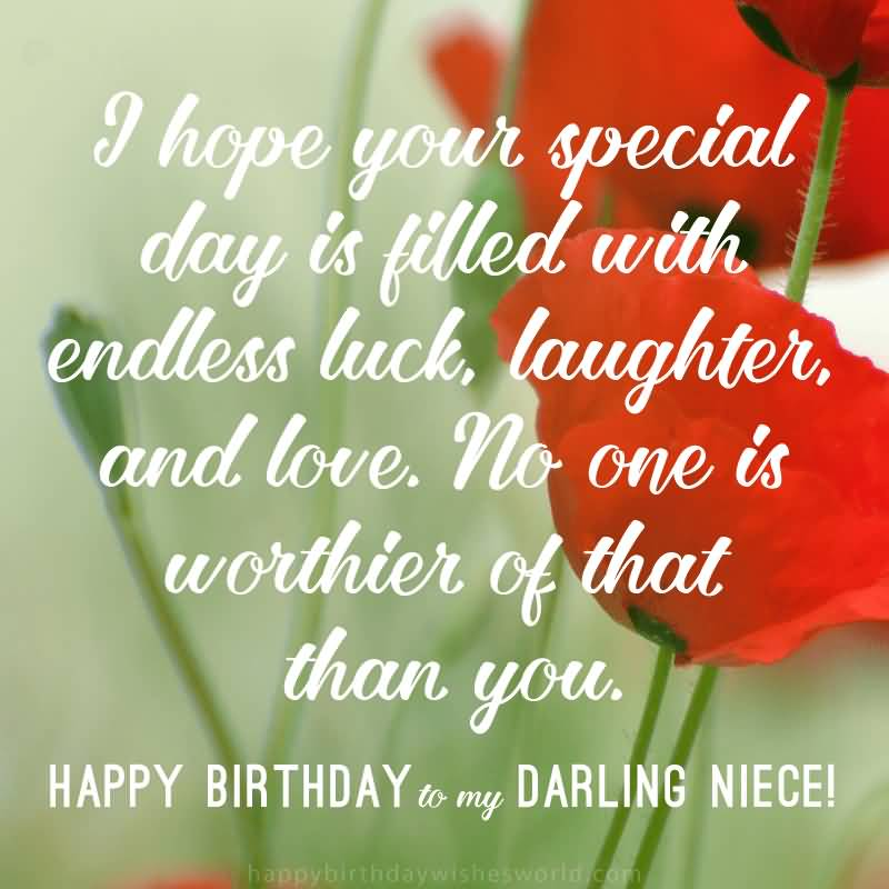 I Hope Your Special Happy Birthday Niece