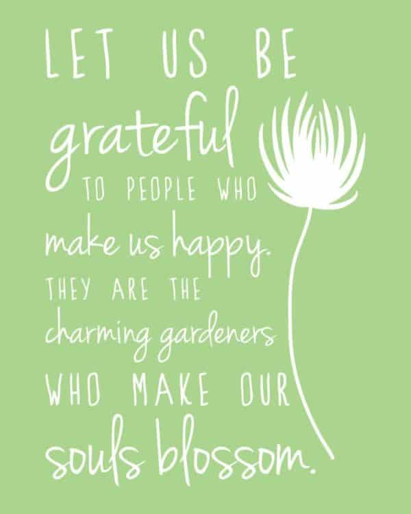 Let Is Be Grateful Plant Quotes