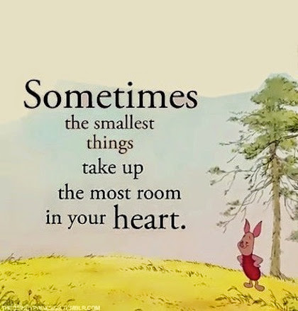 Sometimes The Smallest Things Take Up Winnie The Pooh Quotes