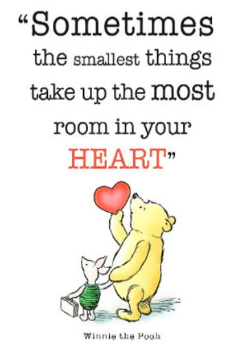 Sometimes The Smallest Things Winnie The Pooh Quotes