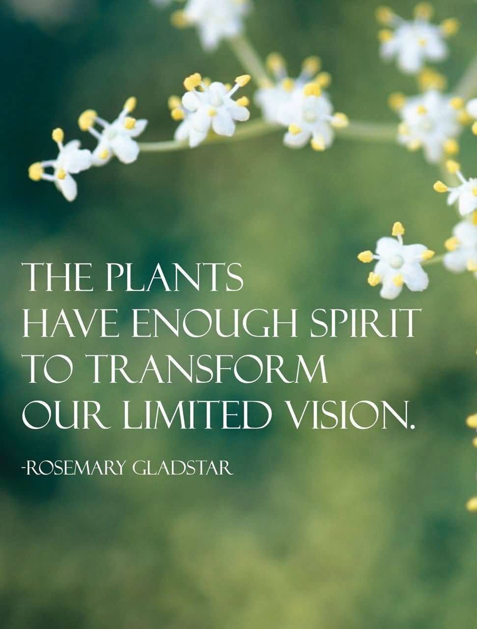 The Plants Have Enough Spirit Plant Quotes
