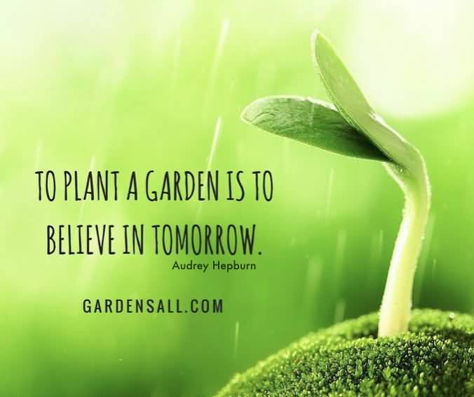 To Plant A Garden Is To Believe Plant Quotes