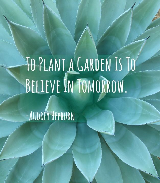To Plant A Garden Is To Plant Quotes