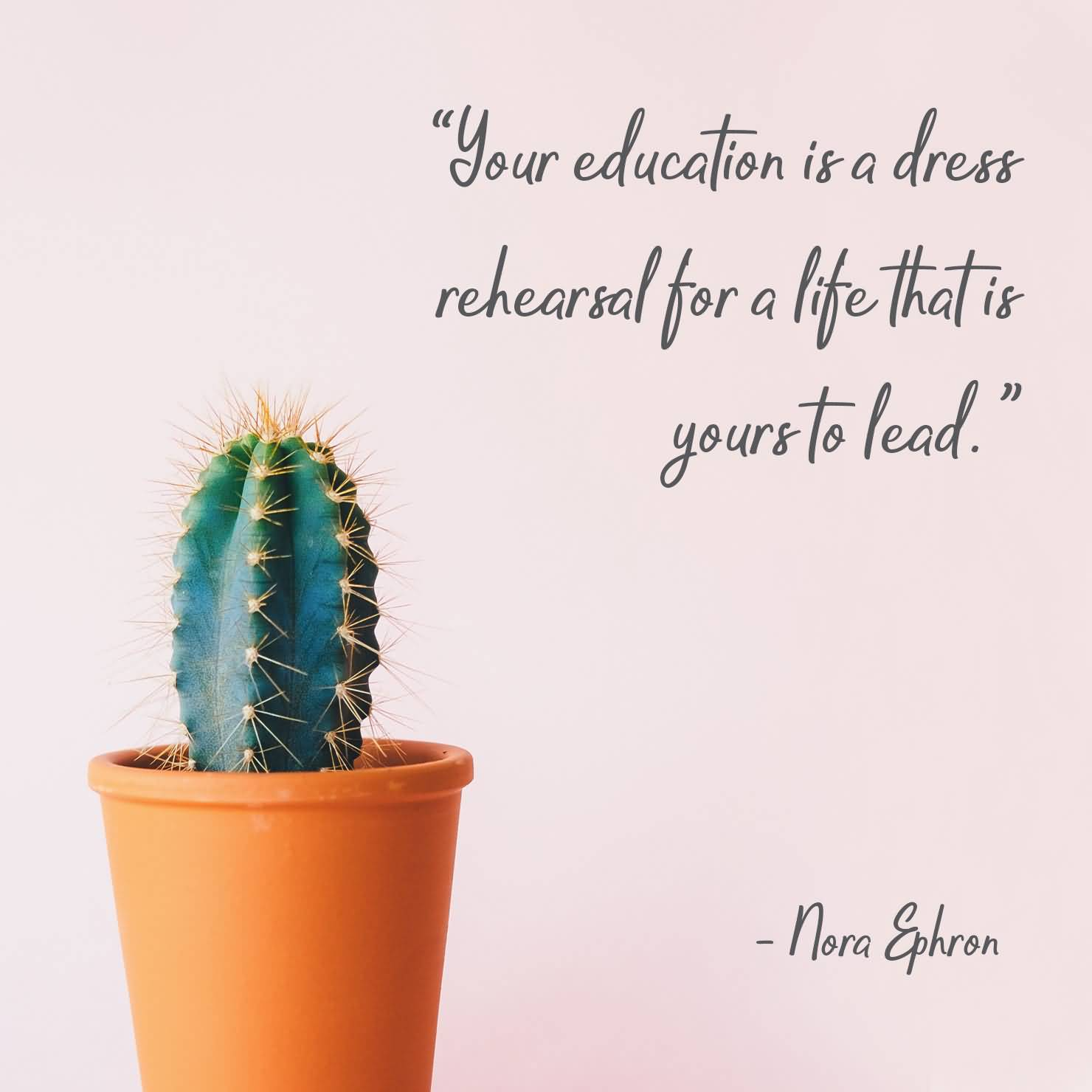 Your Education Ia A Dress Plant Quotes