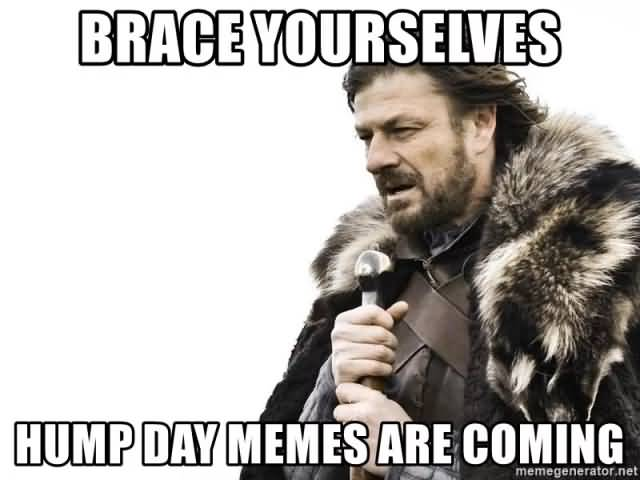 Brace Yourselves Hump Day Hump Day Meme