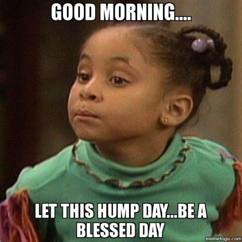 Good Morning Let This Hump Day Meme