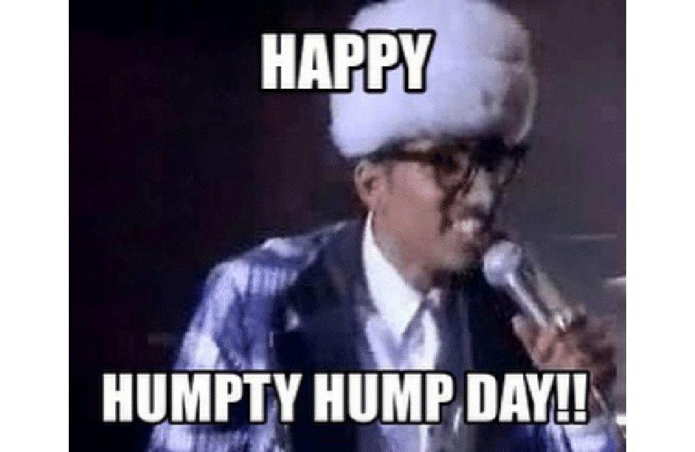Happy Humpty Hump Day Hump Day Meme