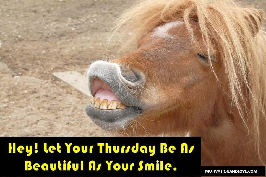 Hey Let Your Thursday Be As Thursday Meme