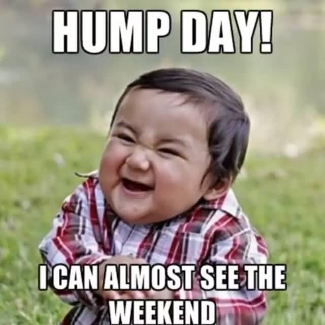 Hump Day I Can Hump Day Meme