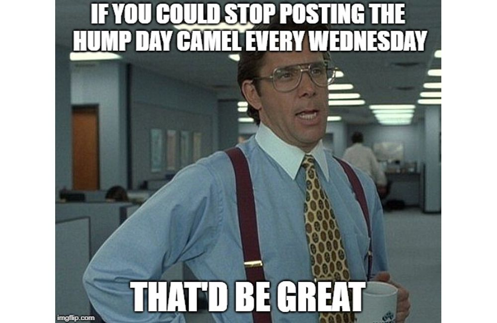 If You Could Stop Hump Day Meme