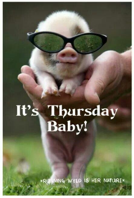 It's Thursday Baby! Thursday Meme