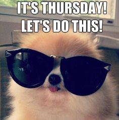 It's Thursday Let's Do This Thursday Meme