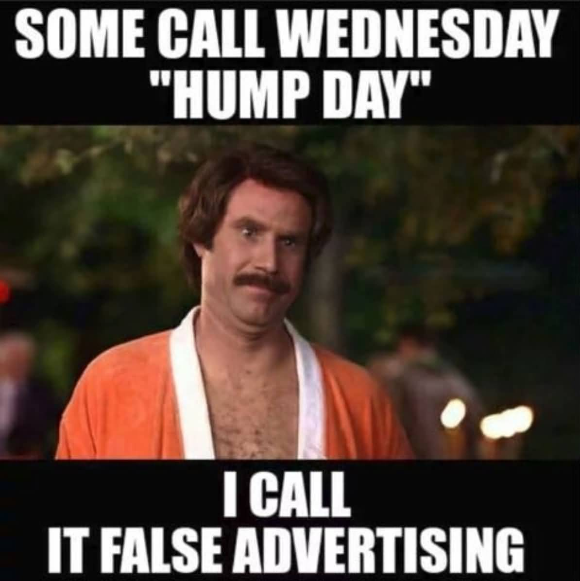 Some Call Wednesday Hump Day Hump Day Meme