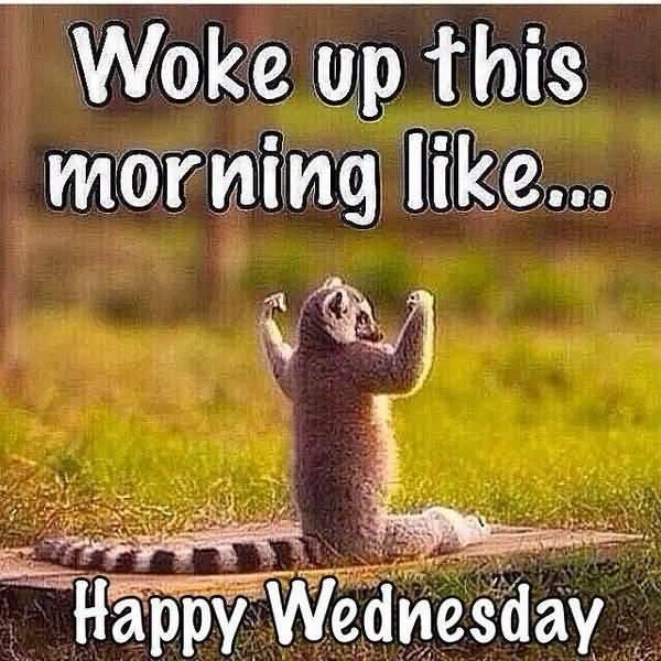 Woke Up This Morning Hump Day Meme