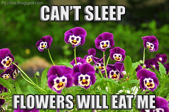 Can't Sleep Flowers Will Flower Meme