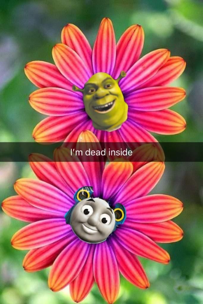 I'm Dead Inside Flower Meme