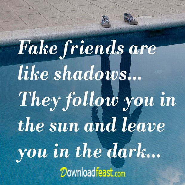Fake Friends Are Like Fake Friends Quotes