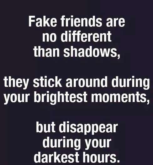 Fake Friends Are No Fake Friends Quotes