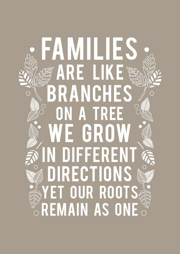 Families Are Like Branches Family Quotes