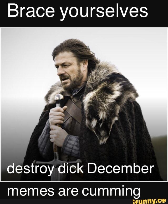 Brace Yourselves Destroy Dick December Memes