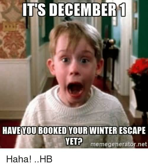 Its December Have You booked Your Winter Escape Yet Memes