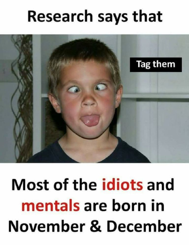 Research Says That Most Of The Idiots Memes