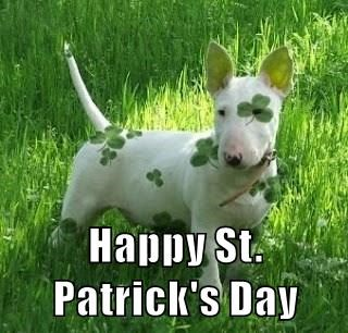 Dog Wishes Happy Patrick's Day