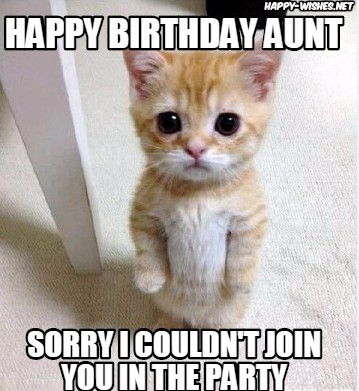 Sorry I Couldn't Join Happy Birthday Aunt Meme