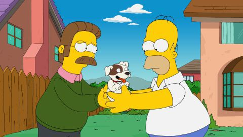 Giving A Cute Puppy Ned Flanders Quotes