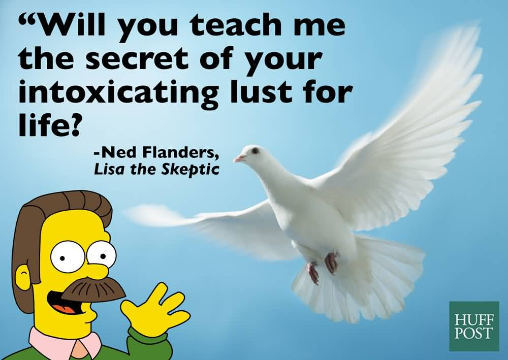 Will You Teach Me Ned Flanders Quotes