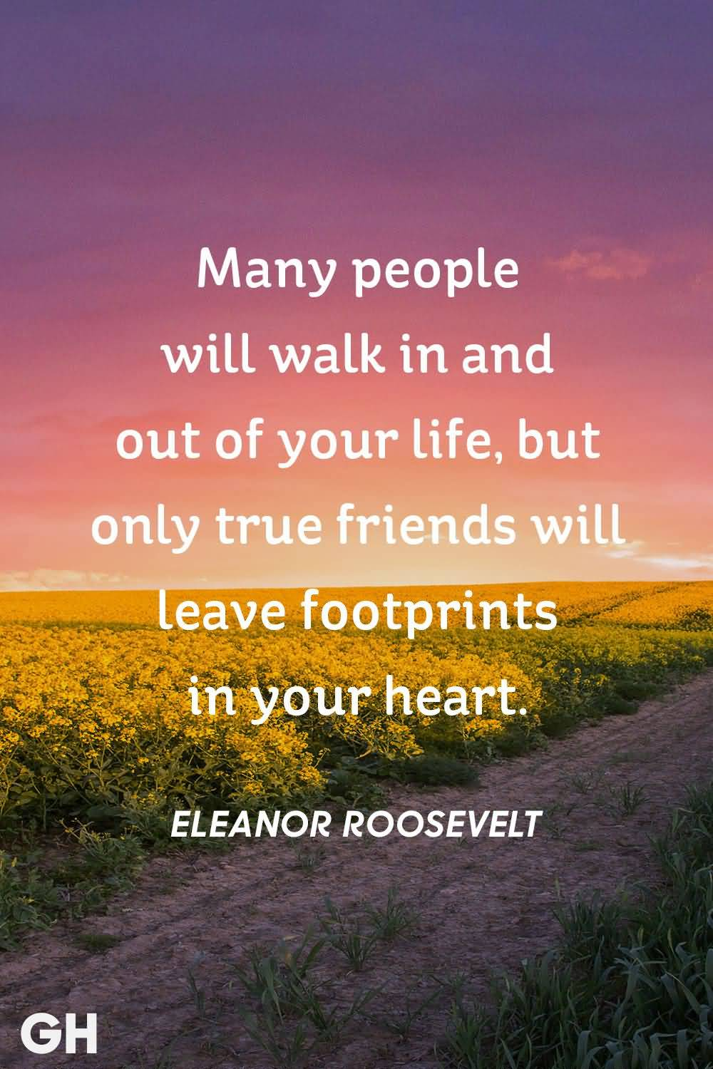 Many People Will Walk In Friend Quotes