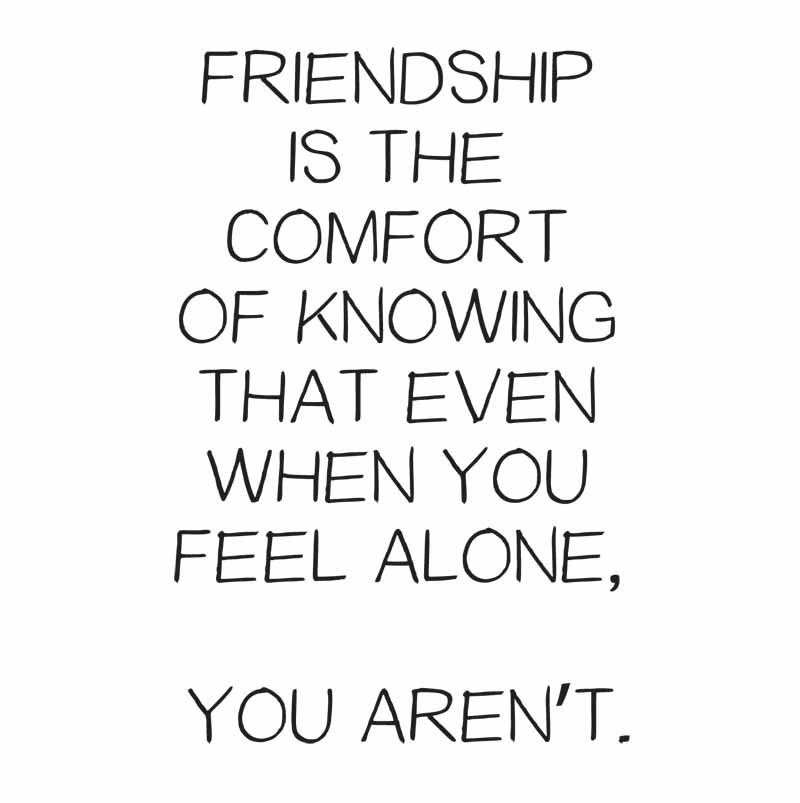 Friendship Is The Comfort Friendship Quotes