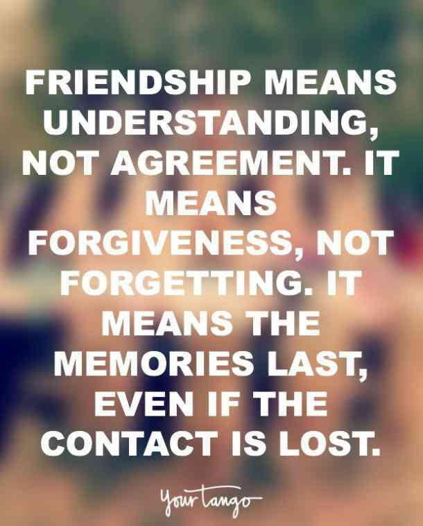 Friendship Means Understanding Not Friendship Quotes