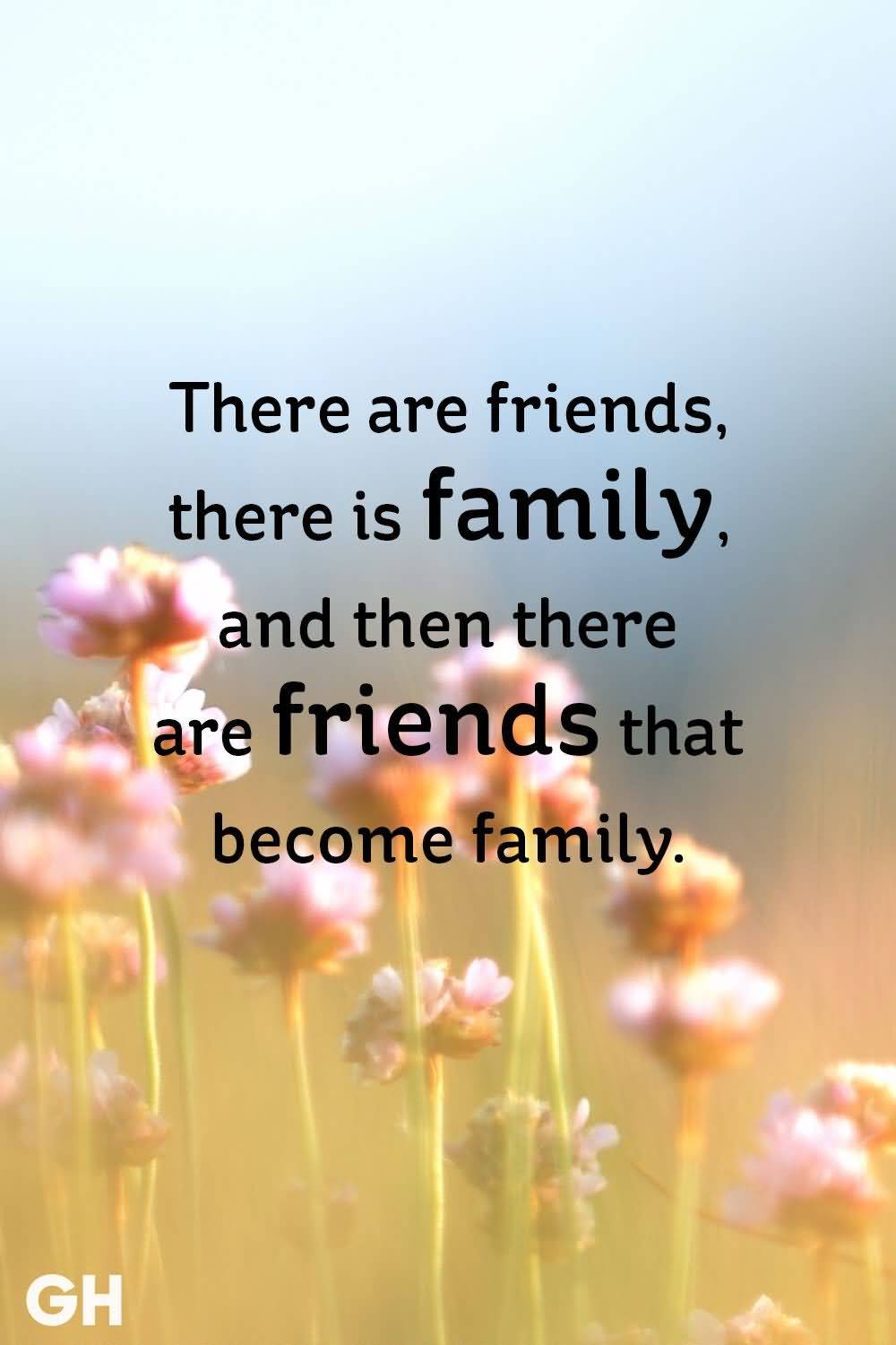 There Are Friends There Is Friends Quotes