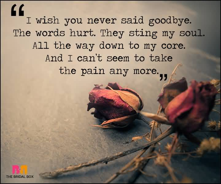 I Wish You Never Love Pain Quotes