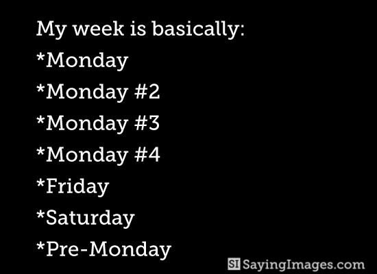 My Week Is Basically Monday