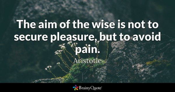 The Aim Of The Pain Quotes