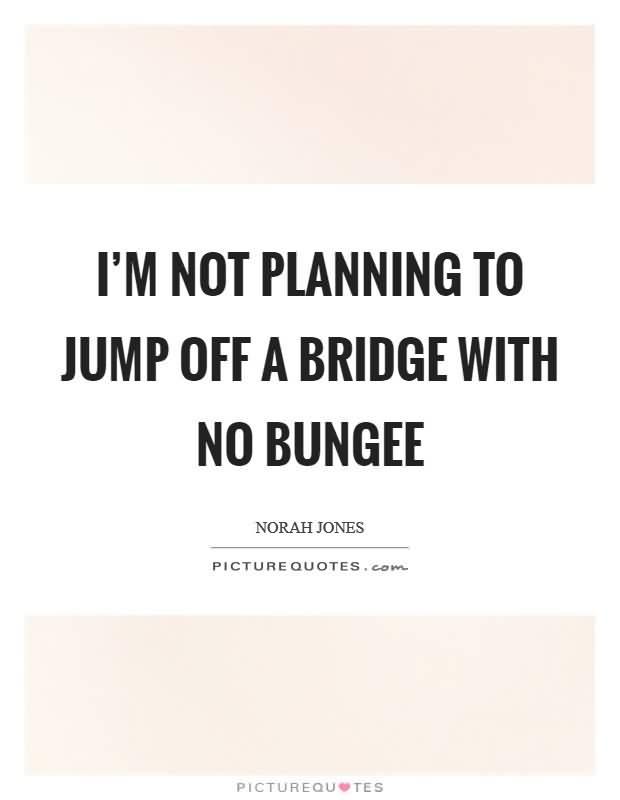 I'm Not Planning To Bridge Quotes