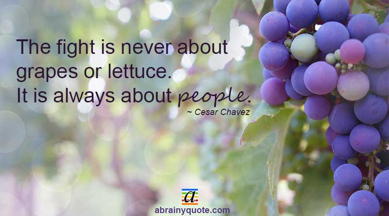 The Fight Is Never About Grapes Cesar Chavez Quotes
